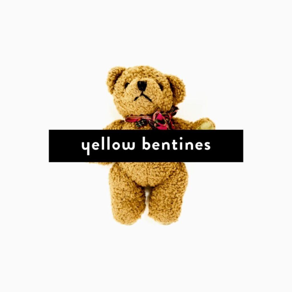 yellow bentines www.macflowers.info #artwork #amazing #stunning #thanksivan #yellowbentines #scottishband #scottishmusic #scottish #glasgowband #album #albumartwork #albumart #art #artwork #photography #yellowbentinesalbum #alllifeneargone #secondalbum #thesecondalbum